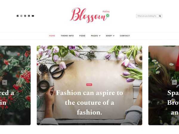 Blossom PinThis Free WordPress Theme
