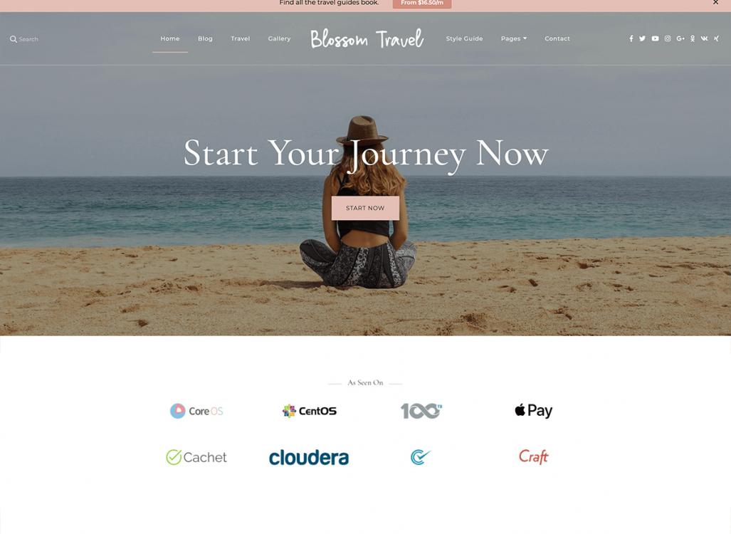 Blossom Travel WordPress Theme